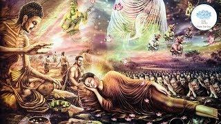 Nghe Phật Kể Chuyện Đêm Khuya Hay Nhất - Phần 4 - Tích Truyện Pháp Cú