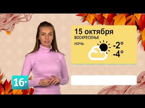 Сладкая погода на 15 октября