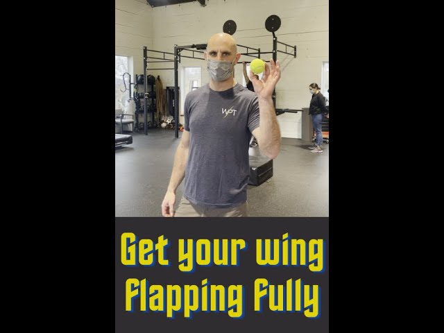 Get your Wing Flapping Fully