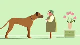 Как дать коту или собаке таблетку