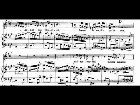 Bach BWV 244-10 Buß und Reu