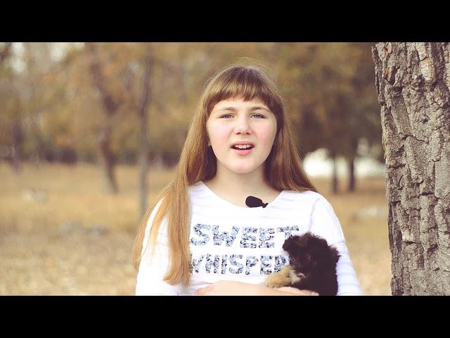 Изображение предпросмотра прочтения – ПолинаСамойленко читает произведение «Песнь о собаке» С.А.Есенина