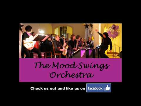 The Mood Swings performance (audio only) at Boston Share Network Annual Fundraiser