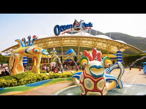 Hong Kong Tourism: Ocean Park steps up efforts to lure visitors