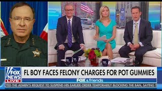 Fox News: Weed Is A Gateway To Meth