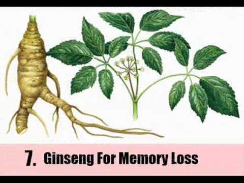 9 Herbal Remedies For Memory Loss - YouTube