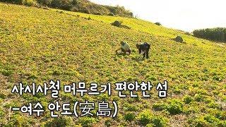 여수 금오열도 중 가장 긴 역사를 자랑하는 안도(安島) [Korea Island]