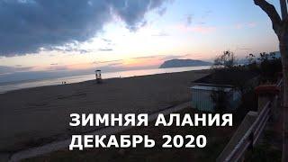 ALANYA Прогулка в декабре Встретил зрителей Алания Турция 2020
