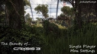 The Beauty of Crysis 3 Single Player - PC Max Settings