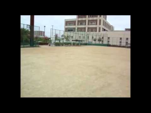 野並公園野球場の投稿動画「野並...
