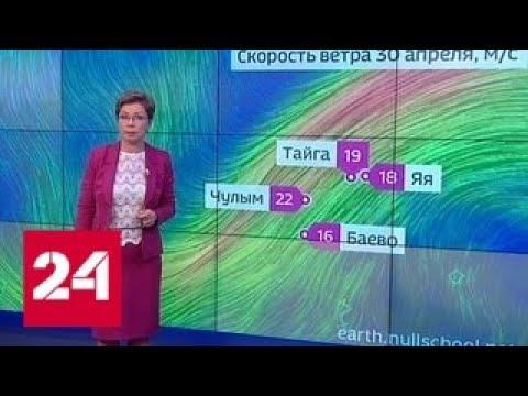 """""""Погода 24"""": москвичей предупредили о дожде на майские праздники - Россия 24"""