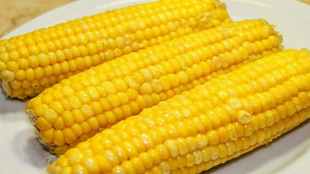 نتيجة بحث الصور عن الذرة الاصفر