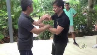 Wing Chun Soft Hands Pt2 screenshot 4
