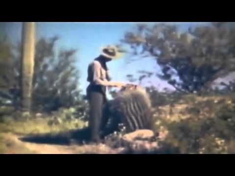 """""""Five Hundred Million Years A Desert"""" 1940's Sonoran Desert (full)"""