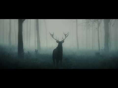 Skrillex - Imagination (NEW SONG 2021)