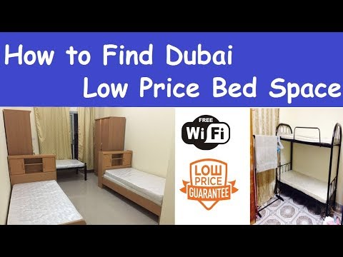 How to Find Dubai Low Price Bed Space on Your Mobile and Computer l Dubai Chif Bad Space