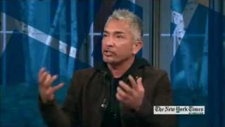Cesar Millan ON ARTS & LEISURE WEEKEND