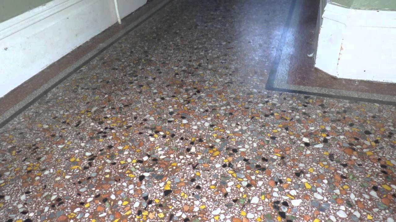 Terrazzo Floor Polishing S  Carpet Vidalondon