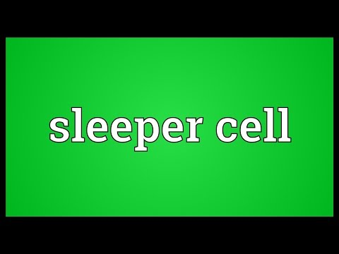 Sleeper cell Meaning