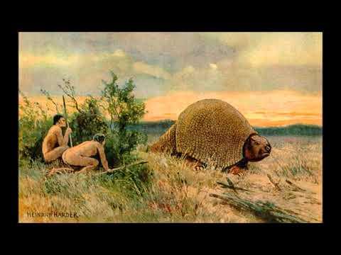Sobre el Poblamiento de Sudamérica y el origen de las Poblaciones Chilenas