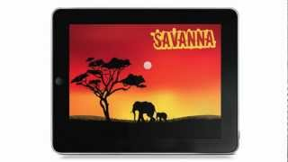 Savanna - Puzzles & Colors of Africa