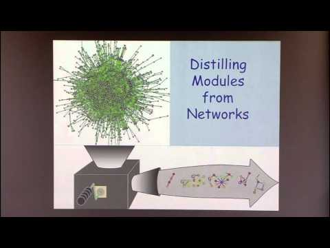 Introduction to Biological Network Analysis III: Identifying Network Modules