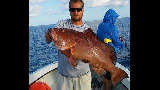 LIVE Sunday night offshore deep sea fishing show 8:30p weekly | http://HubbardsMarina.com