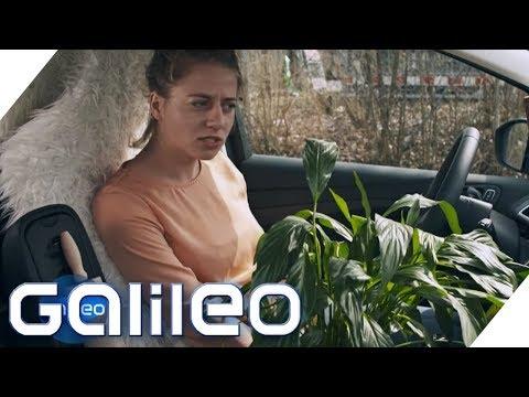Darf Ich In Meinem Auto Wohnen? | Galileo | ProSieben