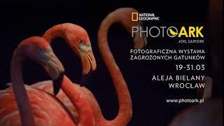 Wystawa Photo Ark we Wrocławiu