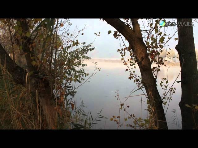 Eco-Viajes en los Humedales del Jarama
