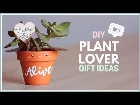 DIY Gift Ideas for Plant Lovers | Easy Birthday Gift Ideas!