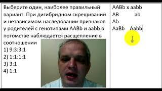 У родителей с генотипами ААBb и aabb в потомстве наблюдается расщепление в соотношении