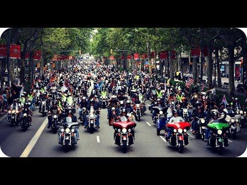 Harley Davidson, les 100 ans d'un mythe