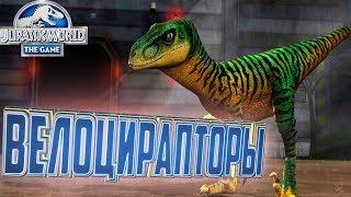 ВЕЛОЦИРАПТОРЫ - Jurassic World The Game #15