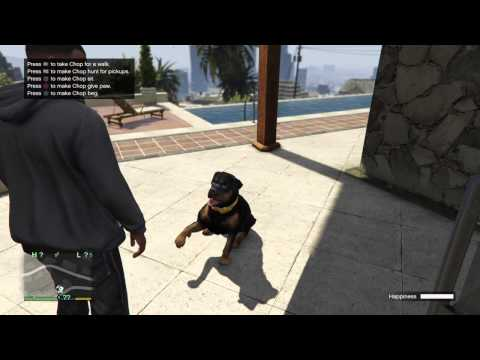 Grand Theft Auto V [Franklin] Chop's iFruit App Tricks