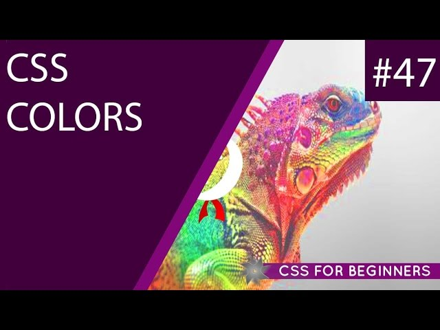 CSS Tutorial For Beginners 47 - Color