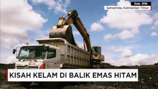Kisah Kelam di Balik Emas Hitam, Samarinda, Kalimantan Timur