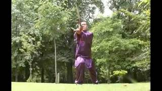 Master Wang Hai Jun - Chen Style Tai Chi Chuan - Taijiquan