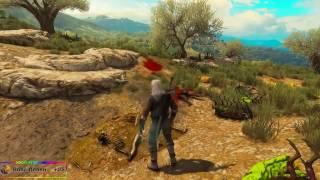 ВНИМАНИЕ!!!! Самый простой способ заработать деньги в игре The Witcher 3 Wild Hunt