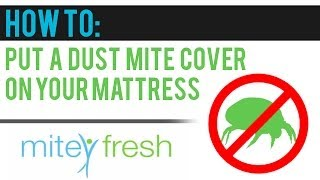 How to put an Allergy Free Dust Mite Cover onto Your Mattress
