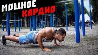 Кардио Тренировка в стиле STREET Workout ! Сжигай ЖИР везде !