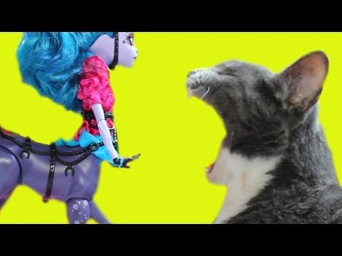 Meesha Kitty Loves Being Petted by Avia Trotter Monster High Doll