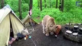 Những khoảng khắc hài hước của các loài động vật P1
