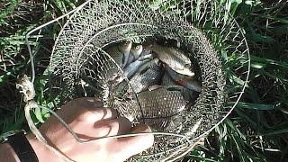 Воронеж, Небольшая рыбалка на Дону(, 2016-02-09T08:26:08.000Z)