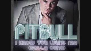 Download Pitbull - I Know You Want Me ( With Lyrics ) MP3 song and Music Video