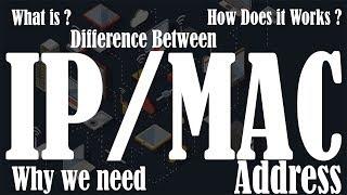 IP Address vs MAC Address | Difference between IP Address and MAC Address | Why we need IP and MAC