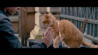 Уличный кот по кличке Боб | A Street Cat Named Bob | Трейлер #1  | 2016