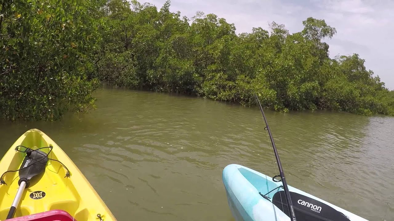 Kayak fishing estero bay youtube for Estero bay fishing report