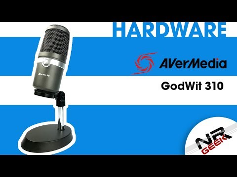 Avermedia GodWit 310 - Hardware