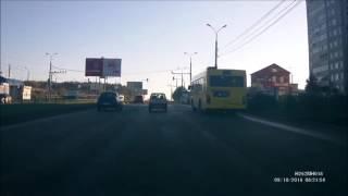 ДТП из-за собаки Ижевск